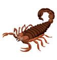 scorpion icon cartoon style vector image