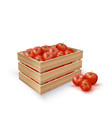 tomatoes in wooden crate vector image