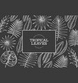 tropical plants frame design hand drawn tropical vector image vector image