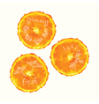 watercolor orange slice circles hand drawn doodle vector image vector image