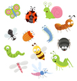 Bug Set vector image