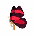 Burgundy butterfly icon cartoon style vector image vector image