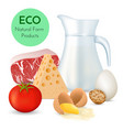 fresh organic food vector image