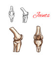 sketch icon of human knee or elbow joints vector image vector image