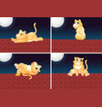 set of cat on the roof vector image vector image