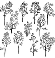 set of different spring trees vector image vector image