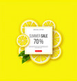 summer sale banner with sliced lemon pieces vector image vector image