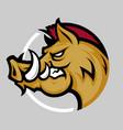 wild boar logo vector image vector image