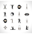 Ninja Icons Set vector image
