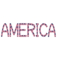 America inscription made from USA flags vector image vector image