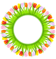 colorful spring tulips vector image vector image