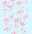 flamingo on blue vector image vector image