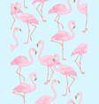 flamingo on blue vector image