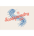 insect logo vintage scolopendra label for bar or vector image vector image