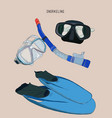 snorkeling equipment fin diving mask with tube vector image vector image