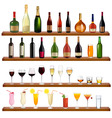 collection bottles and glasses vector image vector image