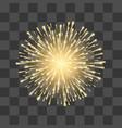fireworks festival gold firework illustration vector image vector image