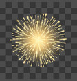 fireworks festival gold firework llustration on vector image