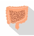 Intestines icon flat style vector image vector image