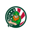 irish-american mechanic usa flag icon vector image vector image