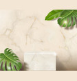 white marble 3d blank rectangle podium vector image