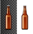 alcohol drink bottle beer or craft ale vector image
