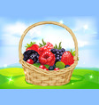 basket full of fruits on green meadow vector image
