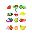 Collection of fruit vector image vector image