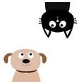 dog cat upside down pet adoption adopt me dont vector image