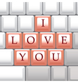 I Love You Keys vector image vector image
