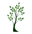 shape tree with leaves nd roots outline vector image vector image