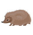 hedgehog icon cartoon style vector image vector image