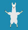 lama alpaca happy animal merryl emoji vector image vector image