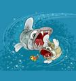 predator fish in the sea vector image