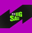 sale banner promotion vector image