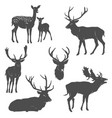 set deer silhouettes in different poses vector image vector image