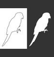 white silhouette and line parrots vector image