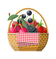 wicker picnic basket with berries vector image vector image