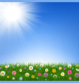 grass and flowers border and sky vector image vector image