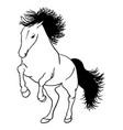 horse line art 05 vector image