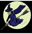 Witch flying on the broom vector image vector image
