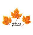 autumn watercolor style seasonal card design vector image vector image
