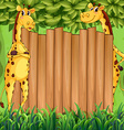 border design with two giraffes vector image vector image