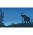 Elephant silhouettes in hill vector image vector image