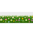 green grass and flowers border transparent vector image vector image
