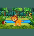 lion in the forest vector image vector image