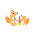 loving mother fox playing with a toy pyramid with vector image vector image