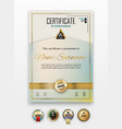 official certificate with gold design elements vector image