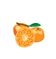 Orange Paint By vector image
