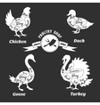 Poultry cuts poster Chicken and duck goose vector image